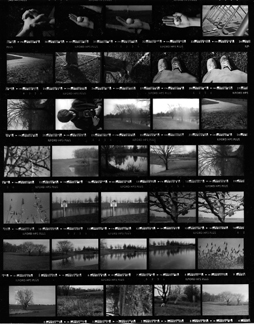 Contact Sheet or Contact Proof